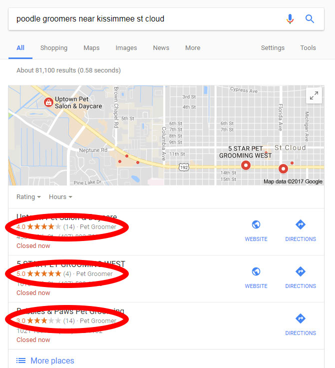 google reviews for poodle groomers in kissimmee st cloud